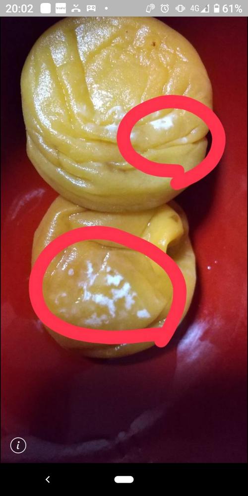 梅干し作り カビについて 毎年、梅干し漬けてますが今年はカビ?が生えました。 写真の赤丸はカビですよね? これはジップロックに入れてあり梅酢にもしっかり浸かっていました。 ダメな実だけ取り除けばそのまま他のは漬けていて大丈夫でしょうか? 宜しくお願いします。