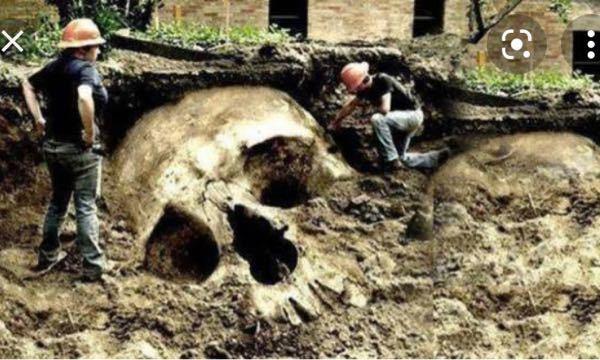 巨大人類の発掘が世界各地で行われてるのに、この事実を一切地球の人々に教えない理由はなんですか?世界中で陰謀論者たちがコラ画像作ってるのですか?