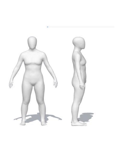 骨格体型を教えてください 身長159cm 体重53キロ