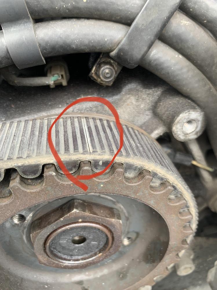 2005のスポーツスターのドライブベルトに写真に写っている亀裂が3箇所入ってました。 早急に交換した方がよいでしょうか。 基本メンテナンスフリーで10万kmが交換目安らしいですが。 現在の走行距離は38000kmです。