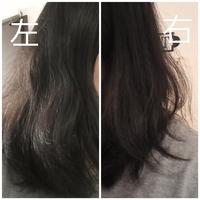 縮毛矯正をかけたのですが、、 先月、初めて行く美容室で 縮毛矯正をかけました。 縮毛矯正をかけてから3日後くらいから、変な段差が出てきて 毛先は外ハネやうちまきになっているのに頭上~半分はストレートがかかっていて妙な髪型です。  縮毛矯正は10年以上かけていて 今まで、何ヶ月か経ってストレート感が弱くなることはあってもここまで取れるのが早いことはありませんでした。  やり直しをお願いすればよ...