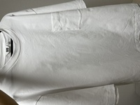 綿シャツのシワについての悩みです。 かなり頑張ってアイロンかけたのですがこれは着て出かけてもいい許容範囲でしょうか?