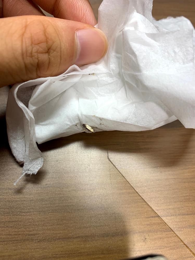 これはなんという虫ですか? 最近家の中でよく見かけます。潰してしまってから写真を撮ったので特定できるかわかりませんが、詳しい方よろしくお願いします。 写真のような大きな白い羽を2枚持った米粒くらいの虫です。あまり一箇所に留まらずよく飛び回ります。