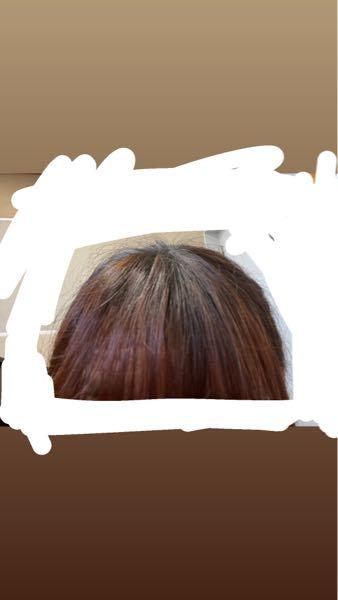 ピンクシャンプーについて 過去に茶髪に染めたことと、ブリーチなしで赤茶っぽく染めてもらう(2回してもらい、およそ2ヶ月前と3ヶ月前)ことをしたのですが、この状態でピンクシャンプーを使うのは良くないでしょうか? 少し赤みがかった色にしたいです。