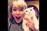 Taylor Swift選手は、最近流行のエアー旅行に嵌ったのでしょうか? 一年前は「重度のパニック障害で飛行機は絶対に乗れない」と言ってたのに、書き換えられたプロフィール内では「私は、個人的に...
