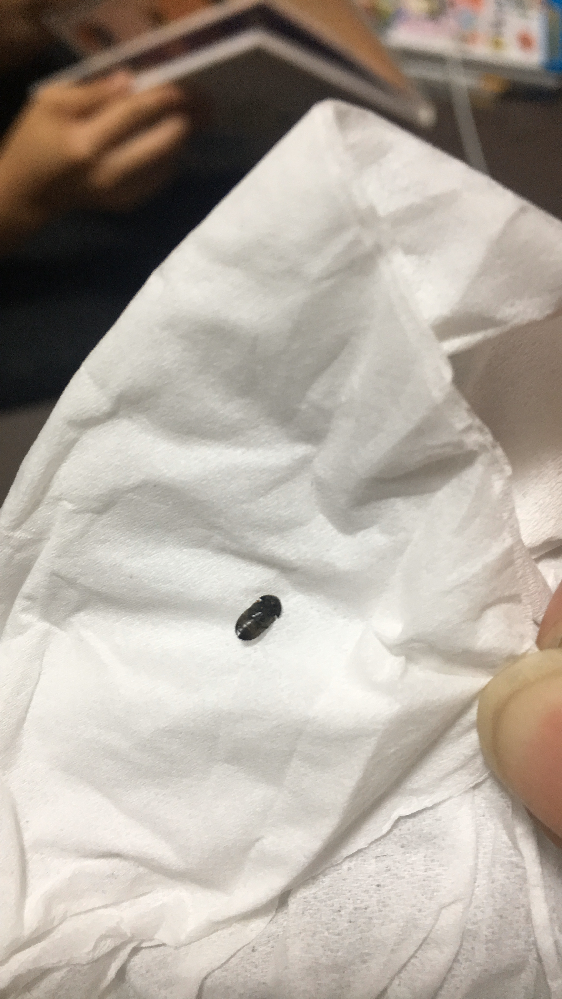 虫の死骸 虫の死骸が部屋にありました。なんという虫かわかりますか?トコジラミでしょうか?5ミリくらいで黒いです。