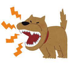 MP4ファイルを出来るだけ安く音だけ再生する方法を教えて下さい 目的は隣の激ウルサ犬の吠え対策で、超音波音を隣の家にスピーカーで攻撃する為です。 音youtubeで拾いました。 ピーーーーーーーーーと言う音です。 出来れば8時間~24時間音を鳴らしたいです。 中古でも、中華製でもOKです。スピーカーは有ります。後は再生する物です。
