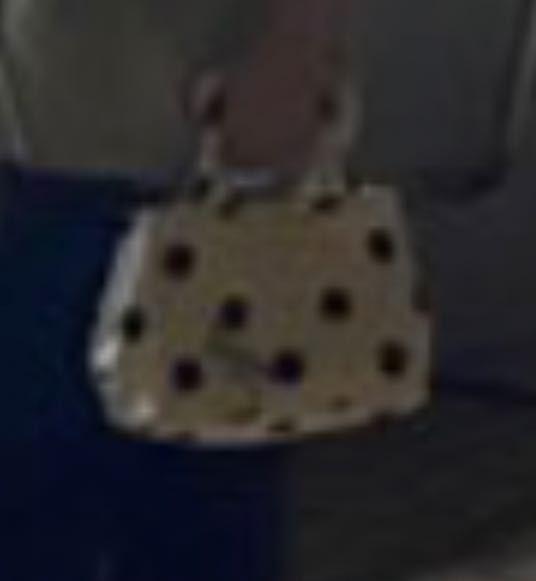 見えにくいけどこのブランドバッグどこのかわかりますか?