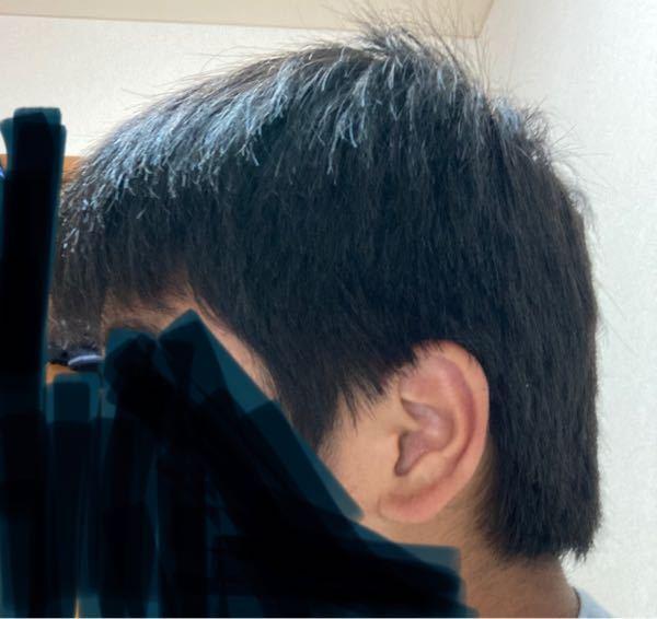 マッシュにしたいのですがどれくらいの期間髪の毛を伸ばせばいいでしょうか?