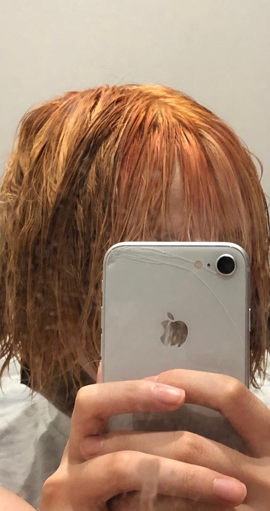 髪色に失敗しました。 もともと、黒染めしてカラーバターでインナー赤にしていたのですがそろそろ飽きてブリーチして茶色を入れようと思ったのですがこの有様です。 ここから、黒と紫を入れようかなと思っているのですがもう黒以外は入れられませんよね?