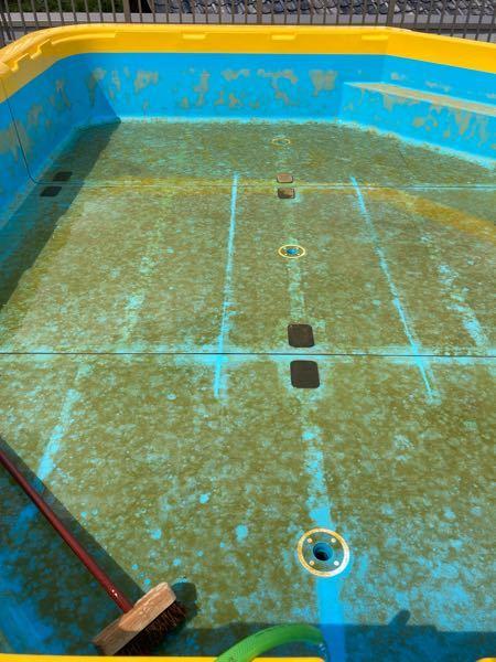 プールの底に溜まった苔?カビ?デッキブラシで擦っても落ちません、洗剤を使用してます。落とす方法を知っている方教えてください。よろしくお願いします。