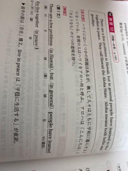 この英文中のlearnって和訳を見る限り無いように見えますが訳さなくていいんですか?