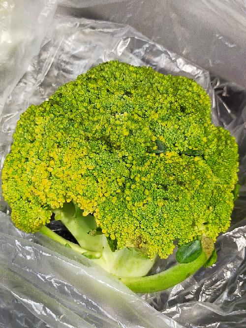 黄色くなった&所々溶けているブロッコリー(点々と黒くなってる部分)は、食べたら危ないですか? 料理よくされる方はブロッコリーがこんな状態だとどうしますか?