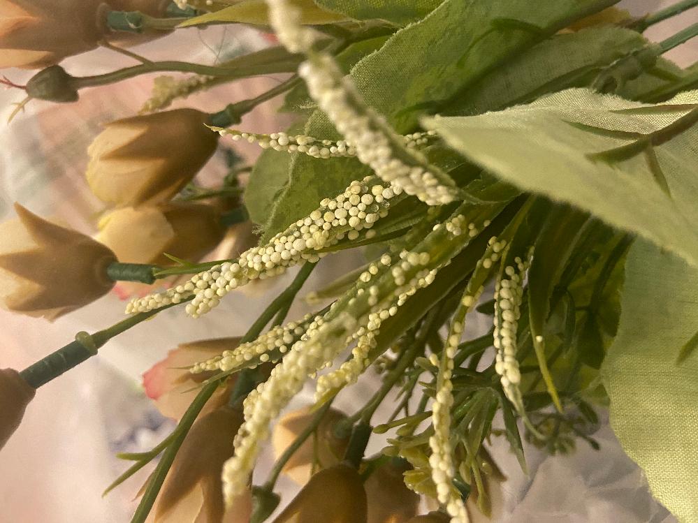 【閲覧注意】卵のような集合体が出てきます。 質問失礼します。今日部屋を掃除していたらずっと部屋に飾っていた偽物の花(布っぽい素材でできている)の細長い葉っぱにだけ写真のような白くて小さいものが付いていました。 触ってみましたが素材は発泡スチロールみたいな手触りで潰してみても中から何か出てくるわけではなくポロポロととれます。 これを買ったのは随分前なので覚えてないのですがこんなものついていた記憶がないです。さらにこの葉にだけついているのも不思議です。 これはただの商品としての演出なのでしょうか?それとも何か虫の卵なのでしょうか……?