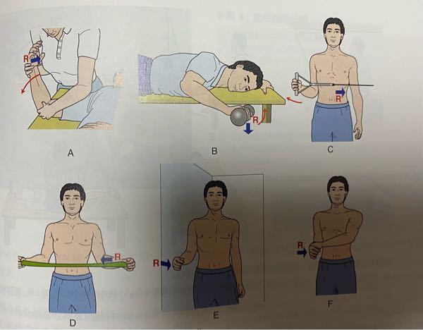それぞれの図の肩関節外旋筋がどんな収縮をしているか教えてください。 また肩関節外旋筋にはどんな筋があるかも教えてください。