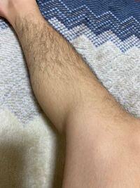 高校2年男子です 脚の毛やばいですか?笑 女子の皆さんはどう思いますか??