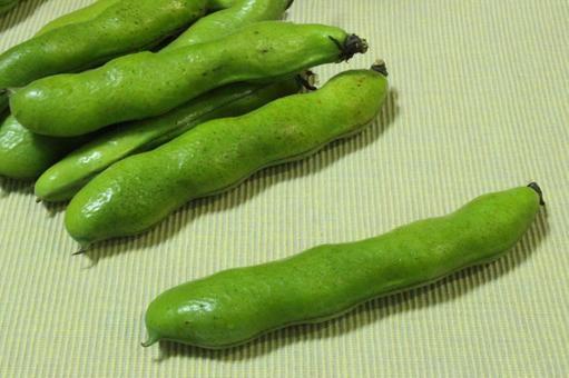 冷蔵庫にバカでかい枝豆みたいのがあったのですが、何という野菜だと思いますか?
