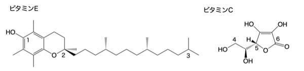 化学得意な方、教えてください ビタミンEは脂溶性、ビタミンCは水溶性でそれを以下の構造の図を参考に説明せよといわれたらどう説明すれば良いですか?