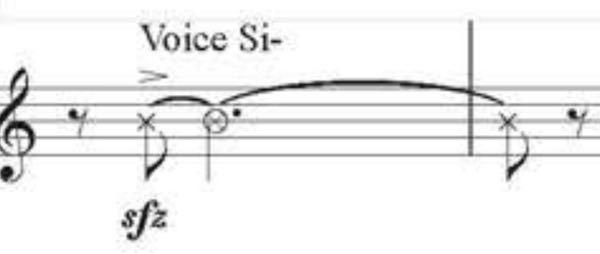 クラリネットのアンサンブルをするのですが(自分はバスクラを演奏します)これはどういう意味ですか? 知識不足ですいません ご回答よろしくお願いします