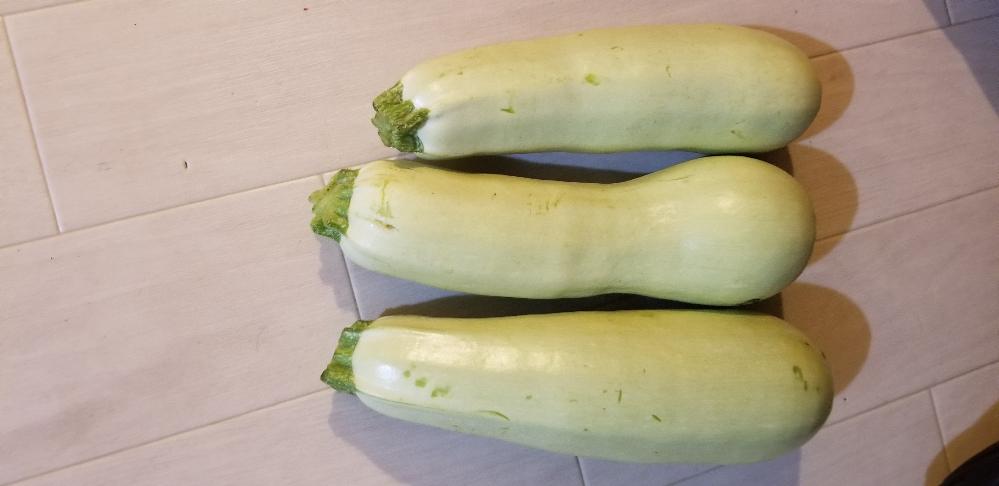 近所の方に頂いた、この画像の野菜?は何でしょうか?