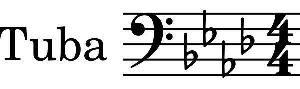 チューバを吹いている中学1年生です。 私はE♭管のチューバを吹いていて、ト音記号のように読んでいます。 先生から、そう読むなら♭を3つ取って読んでね、と言われました。 Es→E A→As B→H D→Des になるという事なのでしょうか?