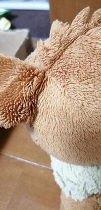 ぬいぐるみを洗濯して干す前、ブラッシングをします。その時毛の流れと逆にブラッシングしたらフサフサになるみたいですが、本当でしょうか? 毛の長さはあまり長くないぬいぐるみの場合です。