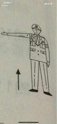 警察官の手信号です。 片腕だけなんですけど、両腕の時と同じ意味ですか?
