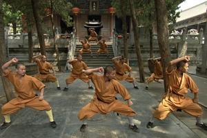 中国の少林寺は女子禁制ですか?拳法の修行をする人(僧?)は男性のみなのですか? 女性を見ない気がします。 尼僧はいないのですか? 日本の少林寺拳法とは無関係なのかも知れませんが、こちらの方は女子が多数いますね。