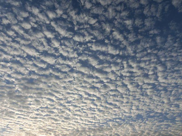 この雲は何ですか?
