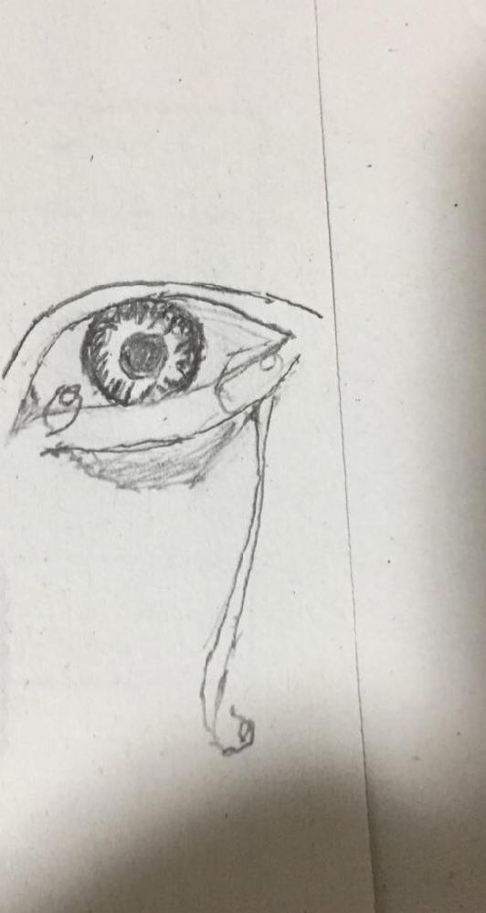 授業中に描いたらくがきです。上手いですか? 私はアニメ絵しか描けないですが暇つぶしにリアルな目の絵に挑戦しました。
