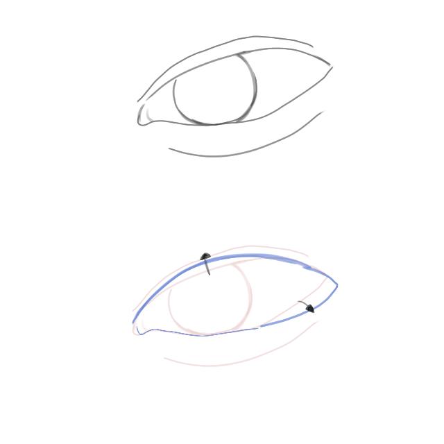 つり目改善の整形を教えてください 画像上のような目を下のような目にしたいです 目尻側は目尻切開??タレ目形成 等がありますが 目頭側の幅を整形で変えることは可能でしょうか、可能であればその施術名...