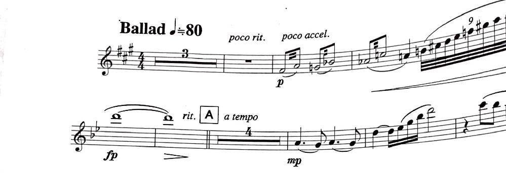 フルートの楽譜です。5小節目にある連符はどのように吹けばいいですか?連符の間に二重線が書かれていて、調べてみたらトレモロ?っぽい?F#とAをトリルのように吹けば良いのですか?