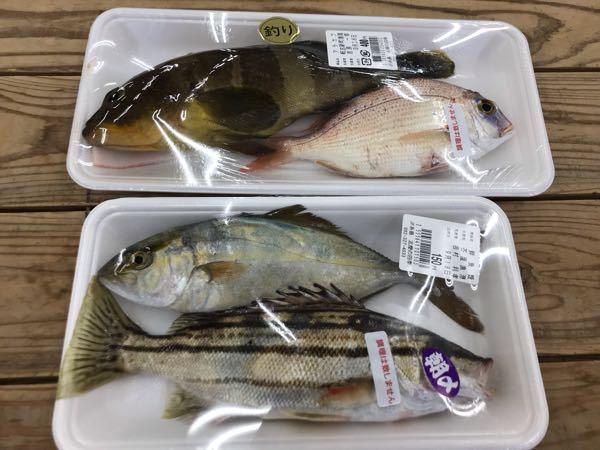 魚の名前がわかる方、教えてください。 今日買ったのですが、鯛くらいしかわかりませんでした。