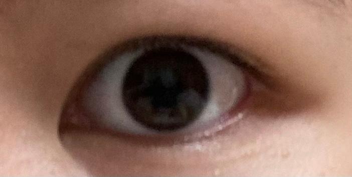 この目の形、種類なんですかね?? 桃花目とか杏眼とかそんな感じの。