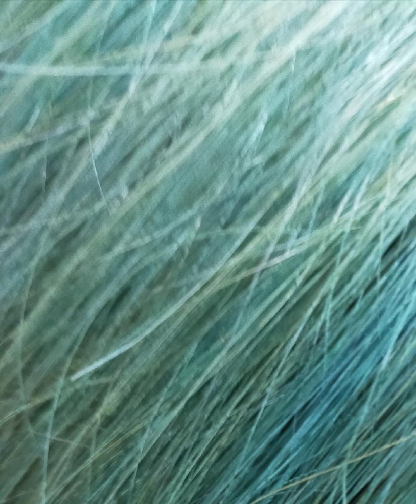 ヘアカラーについて。 画像汚くてすみません。今青から色落ちした状態なのですが、この状態から原色っぽい水色って出来ますか?更にブリーチしないとですかね?