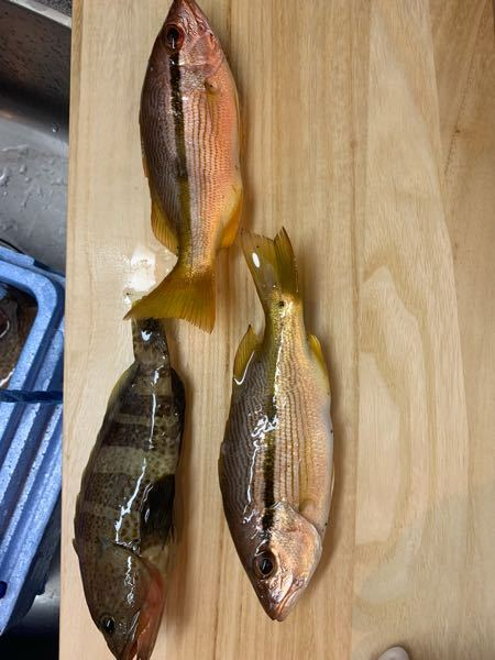 この3匹の魚の名前がわかりません。 わかる方教えて下さい。 あと食べれますでしょうか