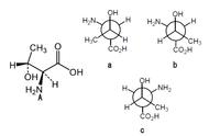 画像のAのアミノ酸のニューマン投影式として正しいものはどれですか?a~cのうちから一つ選んでください。 なぜそうなるのかという理由も簡単で構いませんので合わせてよろしくお願いいたします。