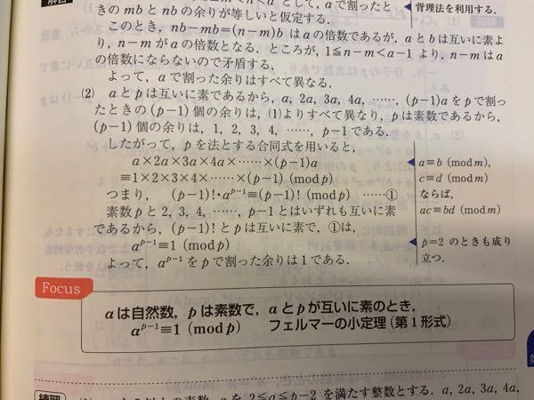 ⑵の解答についてです pが素数であるから、(p-1)個の余りは1,2,3,4,…,p-1である のはなぜですか?