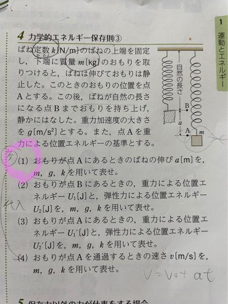 高校の物理基礎の問題です。 4 の (1) の問題がわかりません。 解答は、 mg/k[m] ですが、解説が書いていないのでよく理解できません。 解説をよろしくお願いいたします。