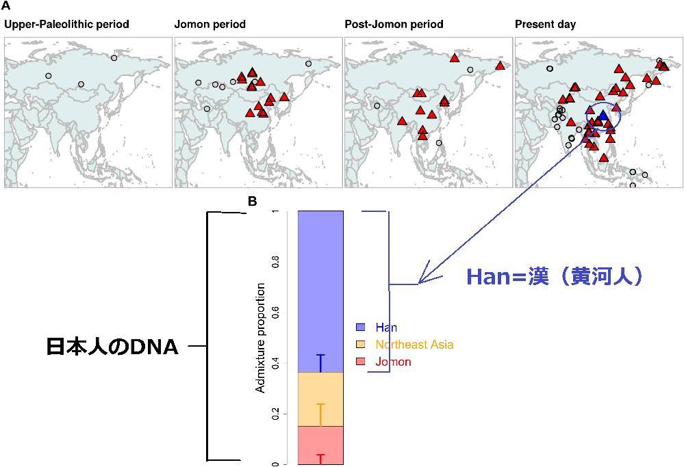 日本人(大和民族)の片方の祖先である「渡来人(渡来系弥生人など)」は、「核ゲノム(DNA)」解析から、その「80%」が「漢=黄河=北京周辺」と判明しました。 . 「日本人(大和民族)」は「縄文人...