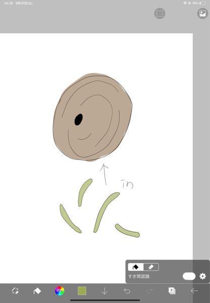 先日壁に引っ付いている茶色い繭?(殻?) の様なものを見つけました 中からは細長い青虫が4匹くらい出てきました。 これは何の虫だったのでしょうか 教えていただければ幸いです