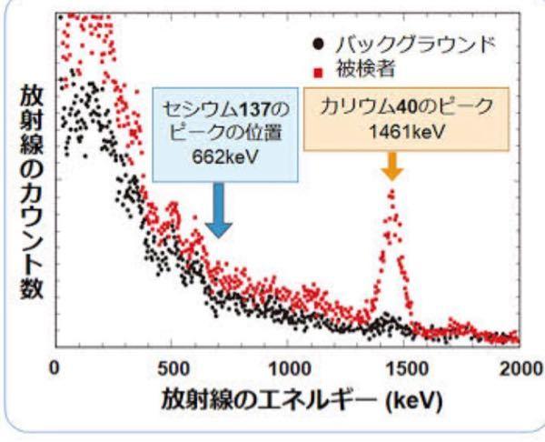 放射線計測についての質問です。 以下のようなグラフが得られた時、ピークになっているところの計数値が高いのは理解できるのですが、ピークとしてみなされていない、0〜200keVあたりの計数値が高い部分はどう判断するのでしょうか?なぜ低いエネルギーの部分は計数値が高く表示されるのか教えていただきたいです。