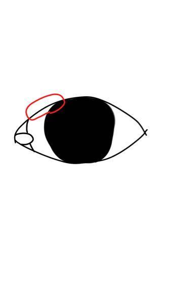目の赤く囲んだ場所が凄く痒いのですが、花粉症ですかね? 目薬をしてもあまり治らないです