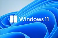 Windows10から11へアップデートは至難の業? Windows11の正式版がリリースされました。我がPCは11の正常性チェッカーをクリアしておりますが、当面10のまま様子を見ようと思います。10の春と秋の大型アップデート(例えば20H2から21H1へ、21H1から21H2等)と、10の21H1からWindows11正式版へWindowsUpdate経由、もしくはMSサイトにて設定とアプ...