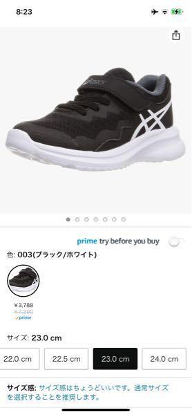 紐靴苦手な成人がジュニア靴を履いていたらおかしいでしょうか?