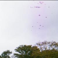 【心霊写真か否か】  『映るんです』で写真を撮り現像した所、 紫色のモヤに黒い点々が写りました。 (※添付画像参照) 少々不安なので、ただのカメラの汚れであればいいのですが、何かわかる方いらっしゃいましたらご回答お願いします。