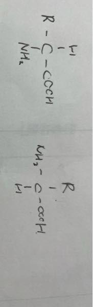 αアミノ酸の構造式を書く時左と右のカルボキシ基とかの位置に決まりはありますか?