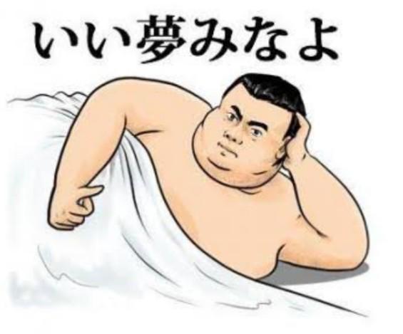 貴女は太いのって好きですか? おデブ。