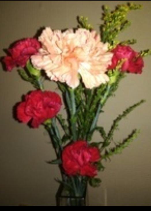 """わんばんこ(""""⌒∇⌒"""") . 今夜も・・クイズ出すぞ。 この花はなんぞや? 当てて・・みやんせ。おら( ゜∀゜)"""
