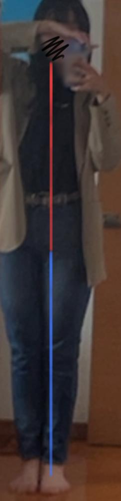 体型についての質問です。自分骨盤が横に広くてどんなズボンやスカートを着ても似合わないのですが、私の足短いですよね? ! 166cmなのに足短いのがコンプレックスで、、、 足が短いかどうか と 骨格についても教えて欲しいです。 あと昔から太ももが太いって言われます(泣)1番痩せてた時でも太ももだけは太かったです、、